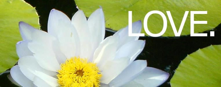 Central Florida Center For Spiritual Living